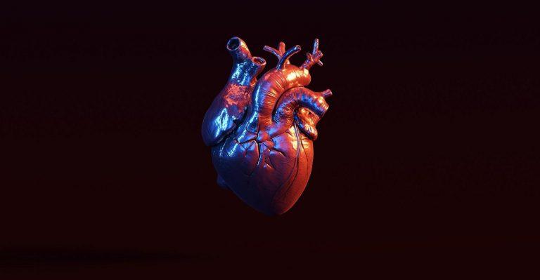 Envie de pratiquer la chirurgie ?  Voici un cœur humain imprimé en 3D à grande échelle