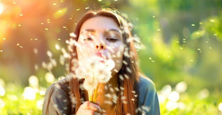Le pollen tourné du bon côté de la force aide à nettoyer les déversements toxiques