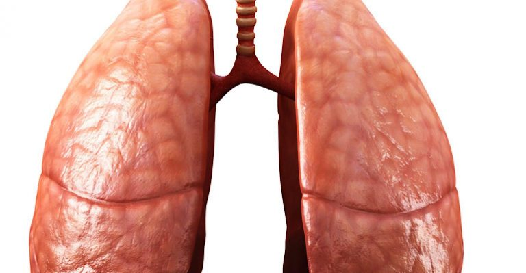 Un jalon dans les organes imprimés en 3D